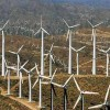 Wind Energy Cannot Compete in Free Market