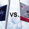 NCPA: California Should Learn from Texas' Example, and more!