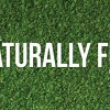 Fall 2014 Naturally Fun Magazine Now Available
